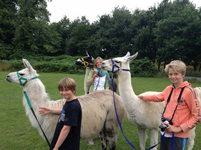 Reduced Rate & Carer Goes Free - The Llama Park