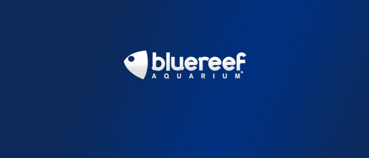 Blue reef aquarium logo