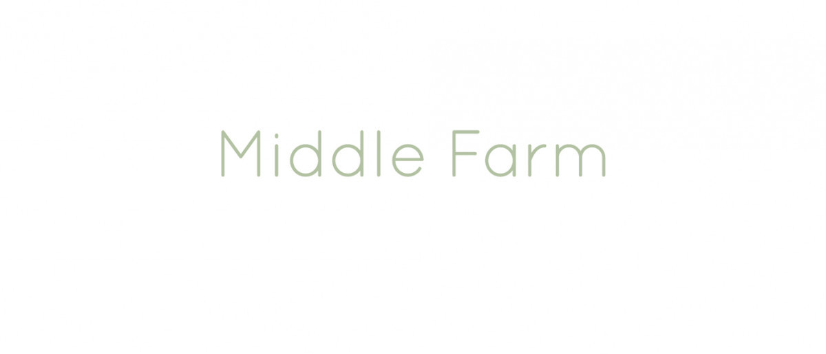Middle farm logo. Middle farm in light green writing