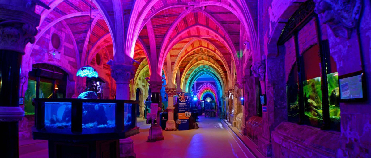 rainbow coloured room with lots of mini activities